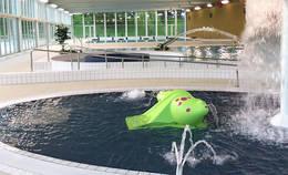 piscine Camille Muffat Juin2016